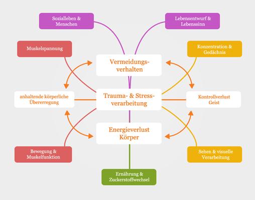 Stressverarbeitung Trauma, Trauma Verlaufsprozess, Verarbeitungsversuch Körper